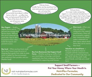 5 Ways to Support Local Farms