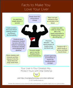 facts to make you love your liver infographic